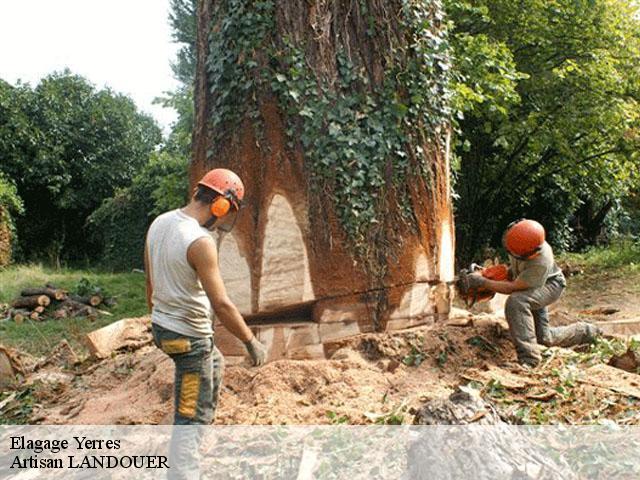 abattage arbre yerres