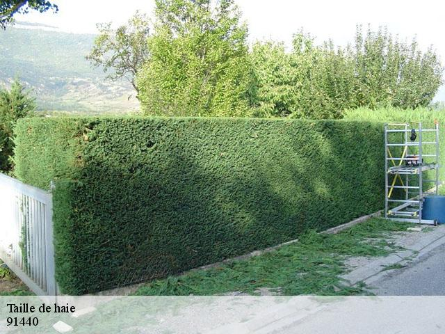 entretien jardin 91440