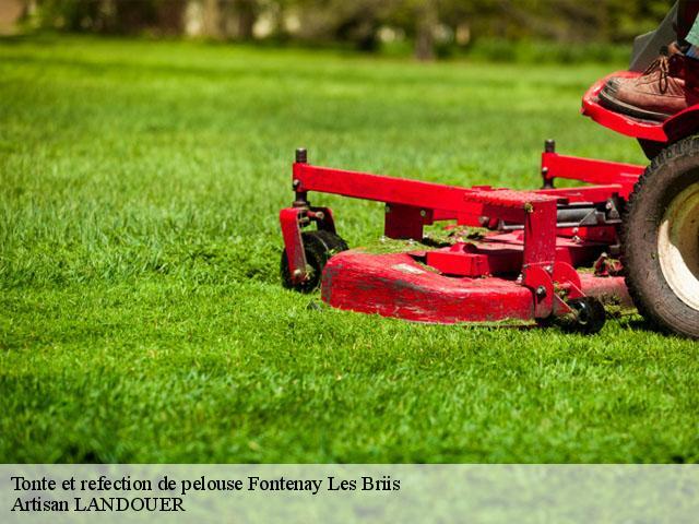 Tonte de pelouse fontenay les briis t l for Gazon tonte